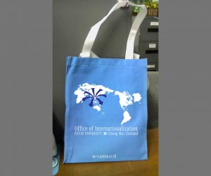Office of Internationalization bag design